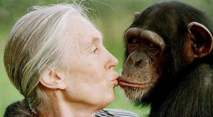 Quote of the Day: Jane Goodall on the Human Animal