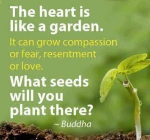 ... compassion or fear, resentment or love. What seeds will you plant