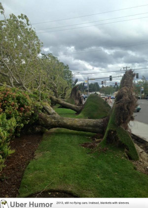 It's windy in Washington | Funny Pictures, Quotes, Pics, Photos ...