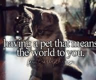 Having a pet that means the world to you