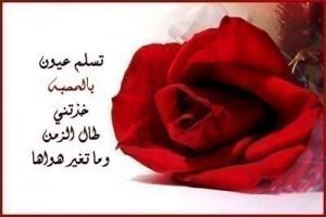 tomothers death in arabic enta habib alby w hayaty ya haqq arabic ...