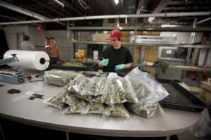 Thread: Medical Marijuana Supporters In Florida Claim Victory