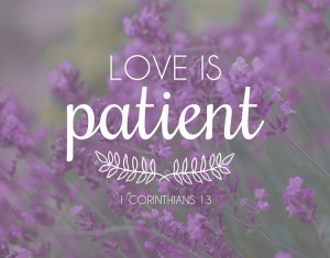 bible quotes about love and patience
