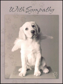 dog sympathy card verse on front with sympathy inside to make heaven ...