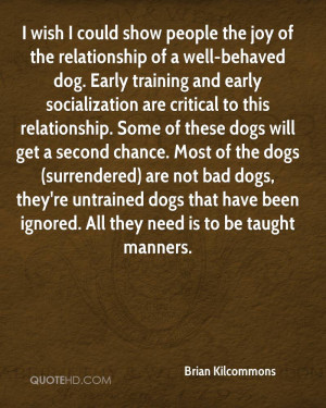 ... dogs (surrendered) are not bad dogs, they're untrained dogs that have
