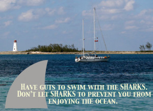 funny shark week quotes