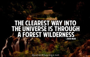 ... quote hit home after john muir wilderness quotes john muir john muir