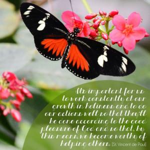 St. Vincent de Paul] | quotes | butterfly | spring