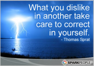 ... Quote - What you dislike in another take care to correct in yourself