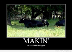 Funny Picture - Makin' bacon cheezeburgers