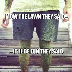 Mow the lawn they said...