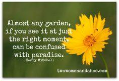 Garden Humor, Quotes & Poems