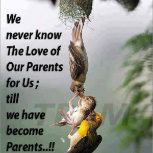 Cute, quotes, inspiring, sayings, love, parents