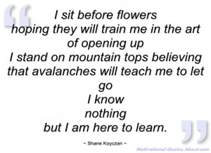 sit before flowers shane koyczan