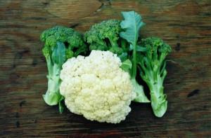 Fresh_fruits_vegetables.jpg