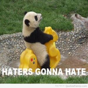 Cute Panda Quotes Panda; pandas being funny