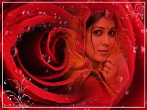 Happy Birthday to Ravishing Diva Sakshi Tanwar|| (Page 14)