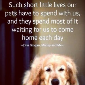 ... it waiting for us to come home each day
