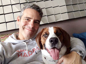 Andy Cohen Madly Love With...