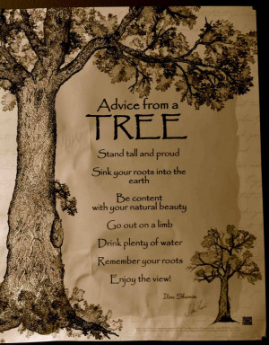 ... wisdom of trees is an old wives tale but curiously enough the old