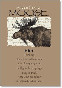 Moose Quotes And Sayings. QuotesGram