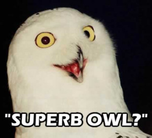 see this every Super Bowl Sunday, and it always makes me laugh