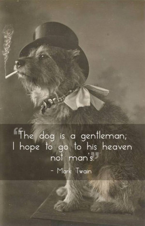 Quotes about Pets — After reading these quotes you will love your ...