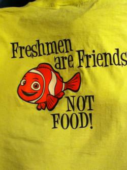 Link Crew: Freshman Advisory