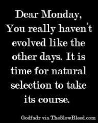 Dear Monday #237