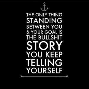 ... you and your goal is the bullshit story you keep telling yourself