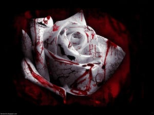 gothic blood rose gothic rose of love gothic wallpaper red