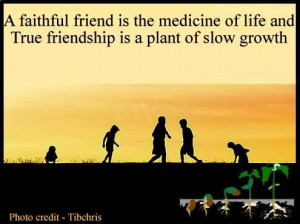 Faithful Friend Is The Medicine Of Life