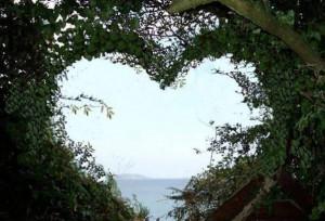 Romantic_Nature_15