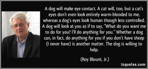 quote-a-dog-will-make-eye-contact-a-cat-will-too-but-a-cat-s-eyes-don ...