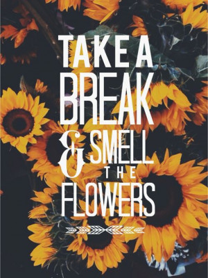 , Daughters Quotes, Sunflower Quotes, Smells, Quotes With Flowers ...