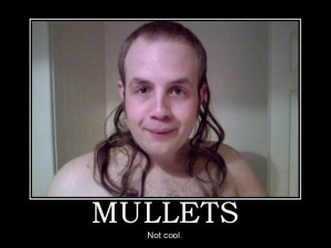 funny mullet source http funnystack com category funnymullet page 3