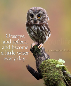 Observe and reflect, and become a little wiser every day. ~Doe ...