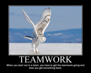 Funny Quotes About Teamwork In The Workplace