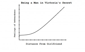 Men in Victoria's Secret