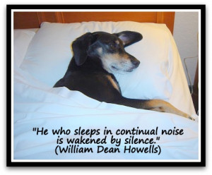 ... -in-continual-noise-is-wakened-by-silence.-William-Dean-Howells.jpg