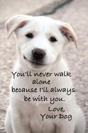 Pet Quotes I Love 1