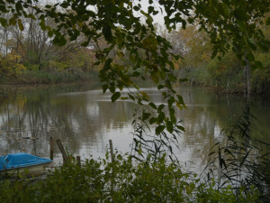 Great Lakes Restoration Initiative cleanup spot on the Rouge River in ...