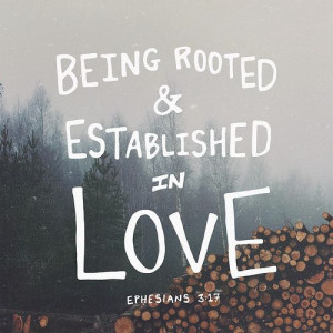 And I pray that you, being rooted and established in love, may have ...