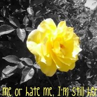 hate me quotes photo: Love me or hate me... YellowRose.jpg