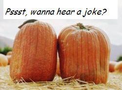 Gardening Jokes, Gardening Quotes and Garden Poems
