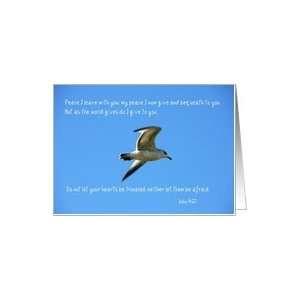 127122483_amazoncom-scripture-quote-john-1427-bird-in-flight-photo.jpg