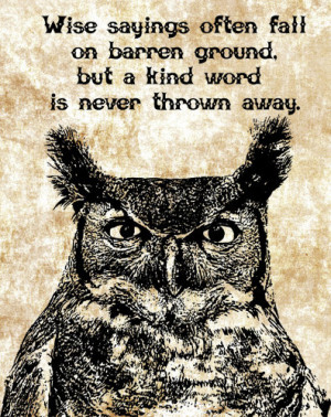 owls face wise sayings quotes digital image download printable bird ...