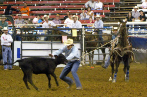 Calf Roping Quotes The calf ropers was from
