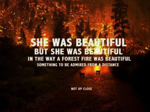 She was beautiful, but she was beautiful in the way a forest fire was ...