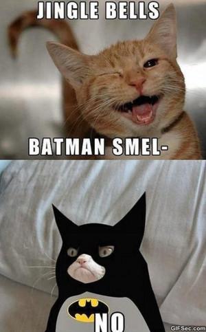Grumpy Batman MEME 2015